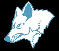 Franken Timberwolves